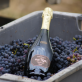 Champagne Serge Rafflin Prestige Millésimé 2013 Brut